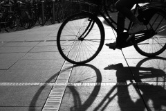 Cykelskygge