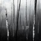 kirsten_bech_andersen_deep_silence-1-plads-kunstfoto