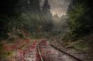 poul-o-red-track-5-plads-kunstfoto