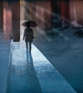 Paraplyen