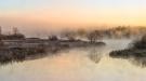 a-morning_reflexions_henrik-hansen-guld-fd