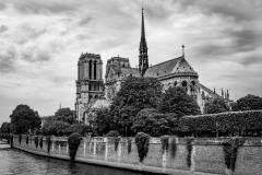 Notre Dame M
