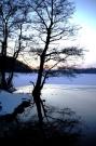 Vintersilhuet
