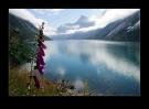 jorn-hede-innvikfjorden