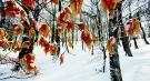 Vinter 3