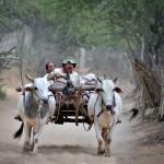 Oksekærre. Burma
