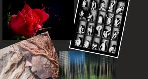 Focus nomineret til Kulturprisen 2013